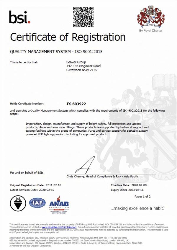 BSI Certificate Thumb
